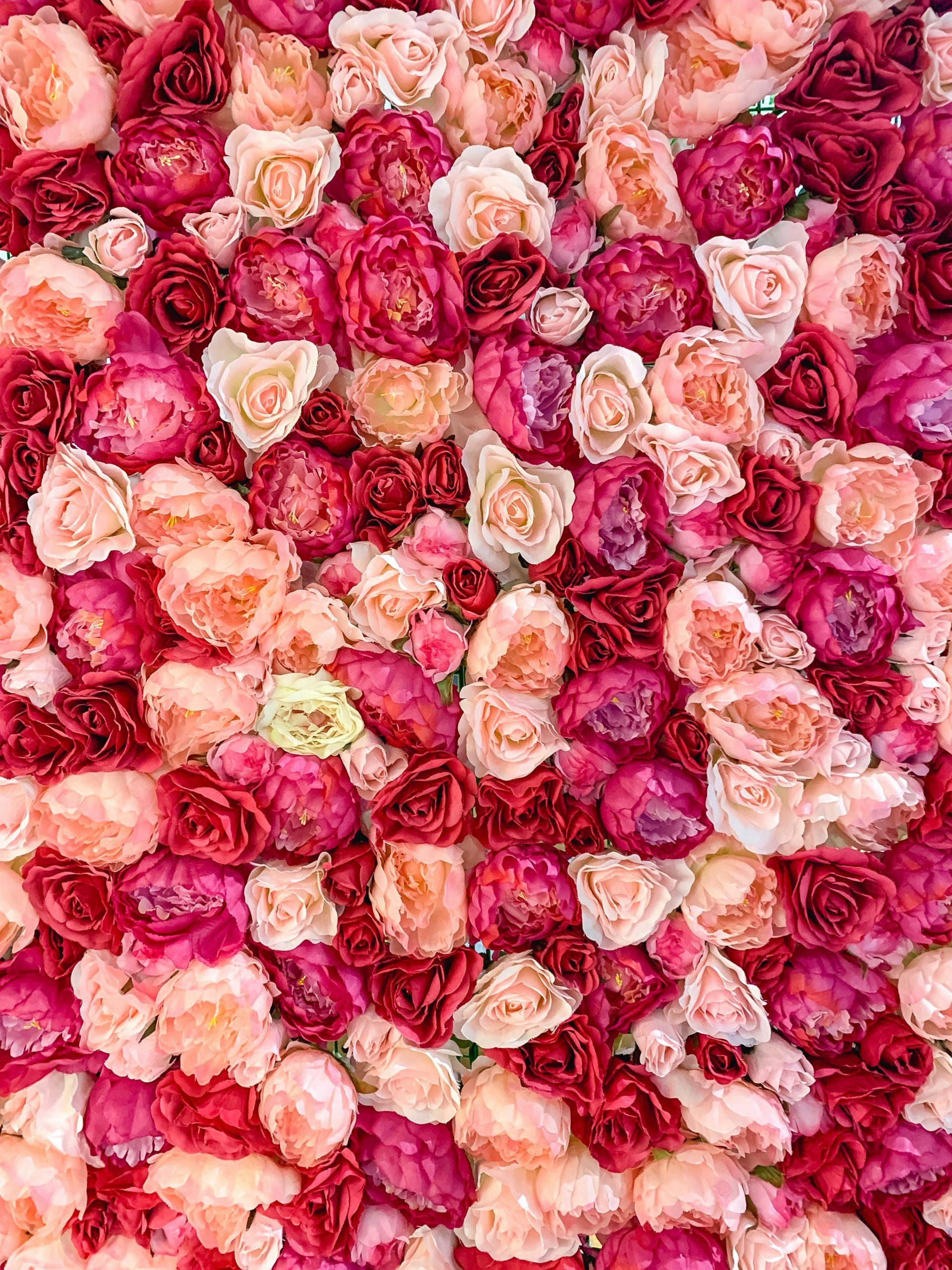 """Susan G. Komen """"More Than Pink"""""""